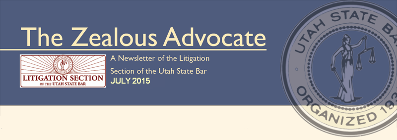 Litigation Section Banner
